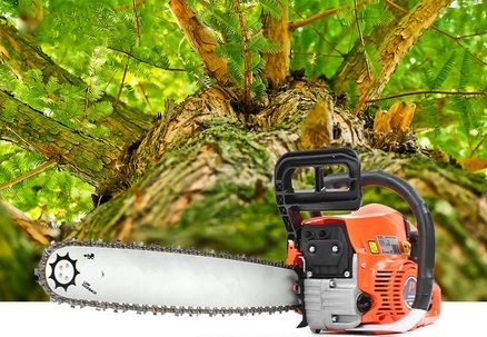 How To Choose An Electric Chainsaw